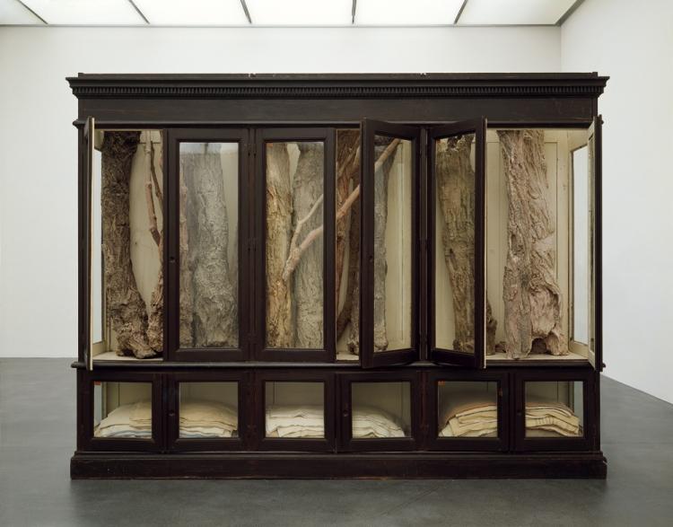 Berlinde De Bruyckere 019,2007 window, wax, epoxy, covers. Collection Claude Berri